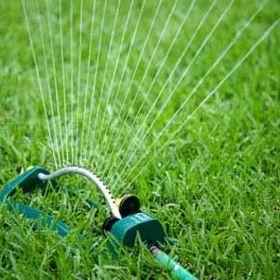 Watering the Turf